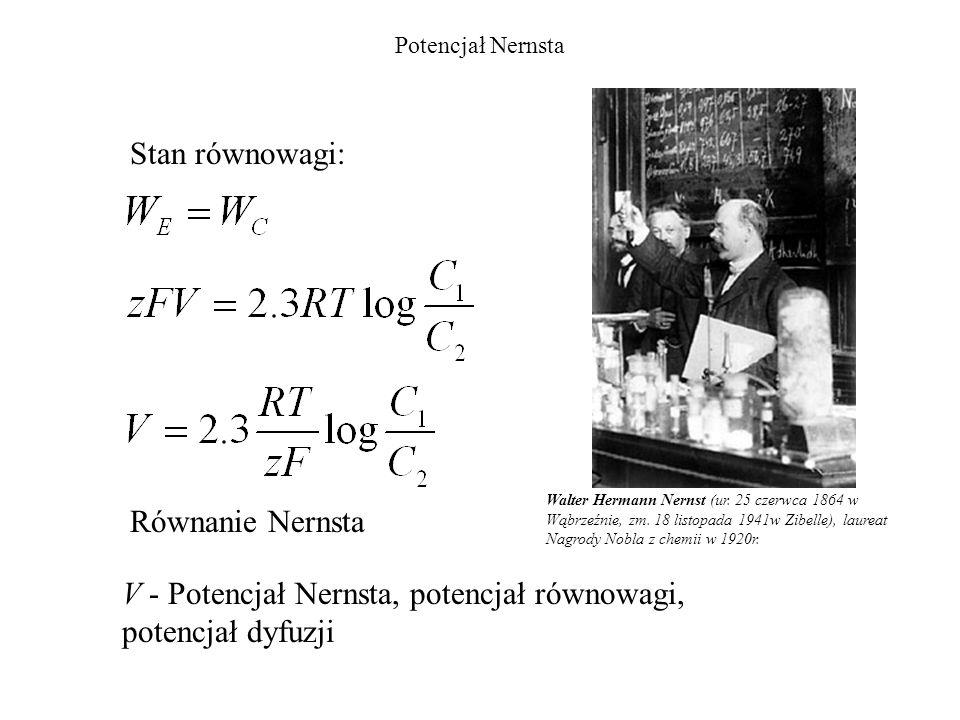 V - Potencjał Nernsta, potencjał równowagi, potencjał dyfuzji