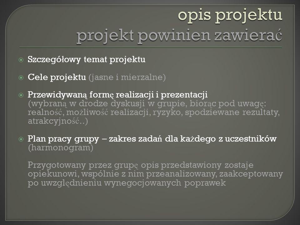 opis projektu projekt powinien zawierać