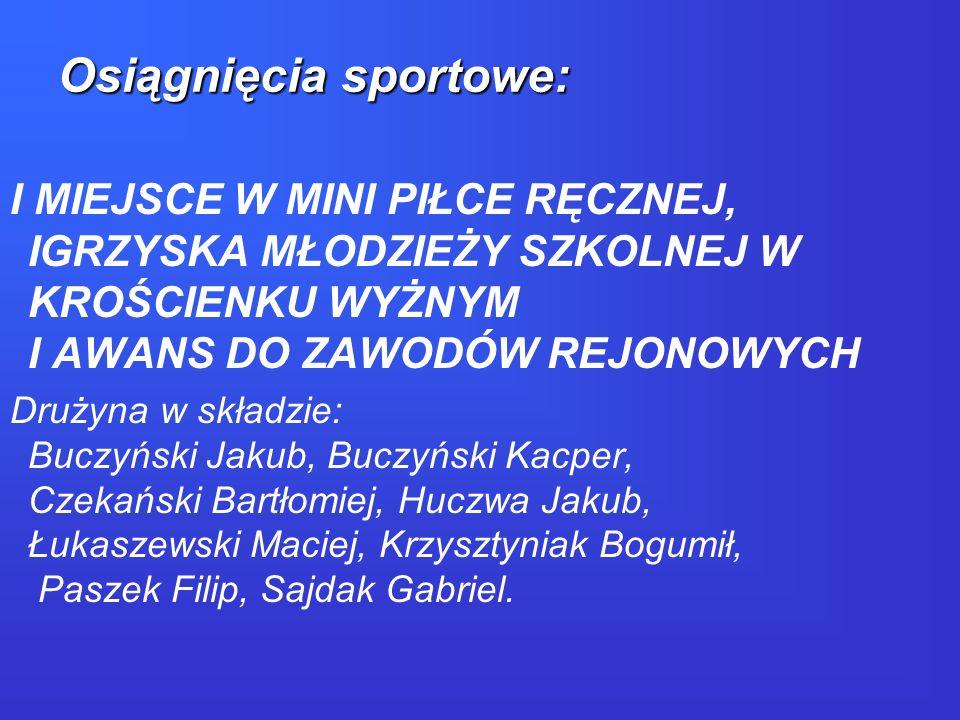 Osiągnięcia sportowe: