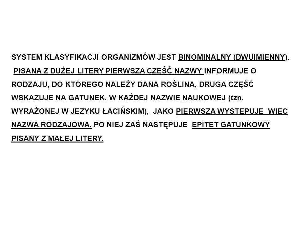 SYSTEM KLASYFIKACJI ORGANIZMÓW JEST BINOMINALNY (DWUIMIENNY).