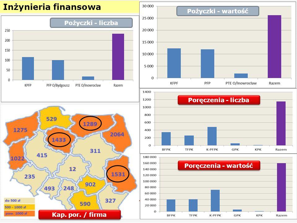 Inżynieria finansowa Pożyczki - wartość Pożyczki - liczba