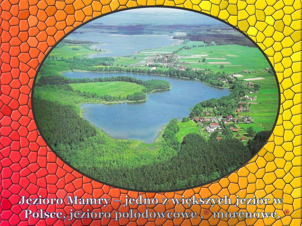 Jezioro Mamry – jedno z większych jezior w Polsce, jezioro polodowcowe ,* morenowe. *
