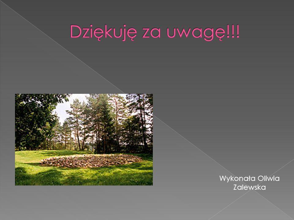 Wykonała Oliwia Zalewska