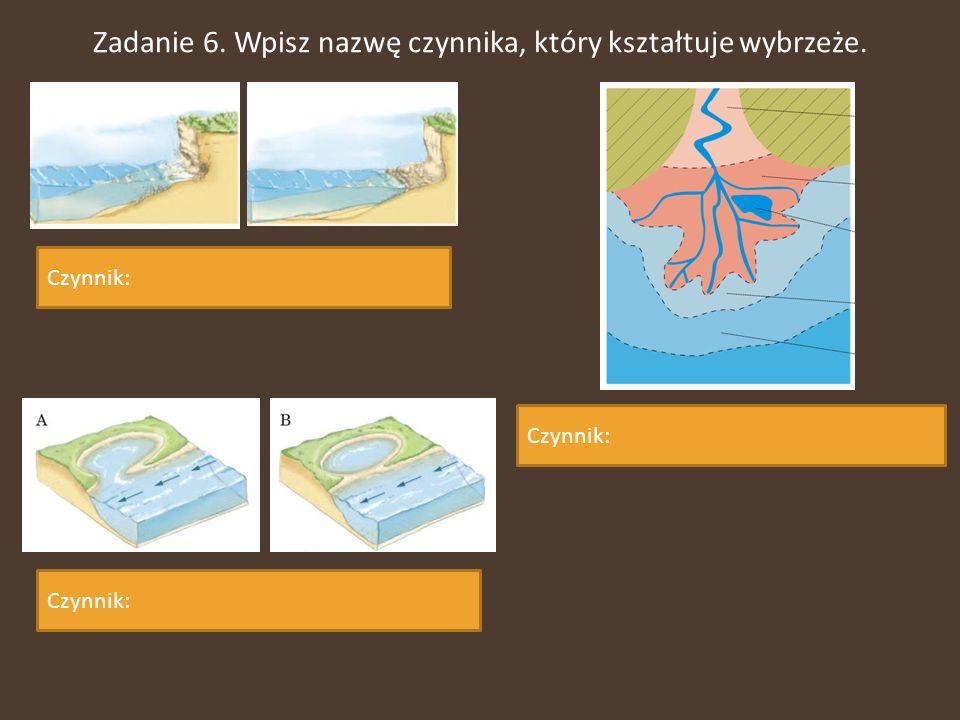 Zadanie 6. Wpisz nazwę czynnika, który kształtuje wybrzeże.