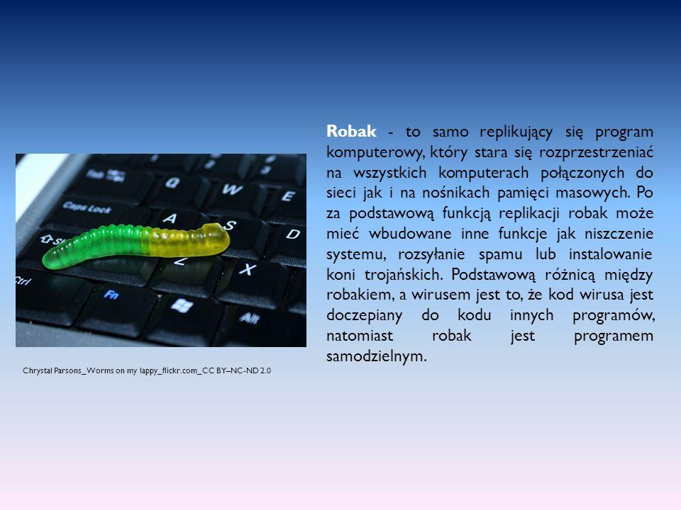 Robak - to samo replikujący się program komputerowy, który stara się rozprzestrzeniać na wszystkich komputerach połączonych do sieci jak i na nośnikach pamięci masowych. Po za podstawową funkcją replikacji robak może mieć wbudowane inne funkcje jak niszczenie systemu, rozsyłanie spamu lub instalowanie koni trojańskich. Podstawową różnicą między robakiem, a wirusem jest to, że kod wirusa jest doczepiany do kodu innych programów, natomiast robak jest programem samodzielnym.
