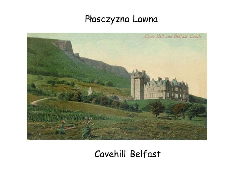 Płasczyzna Lawna Cavehill Belfast
