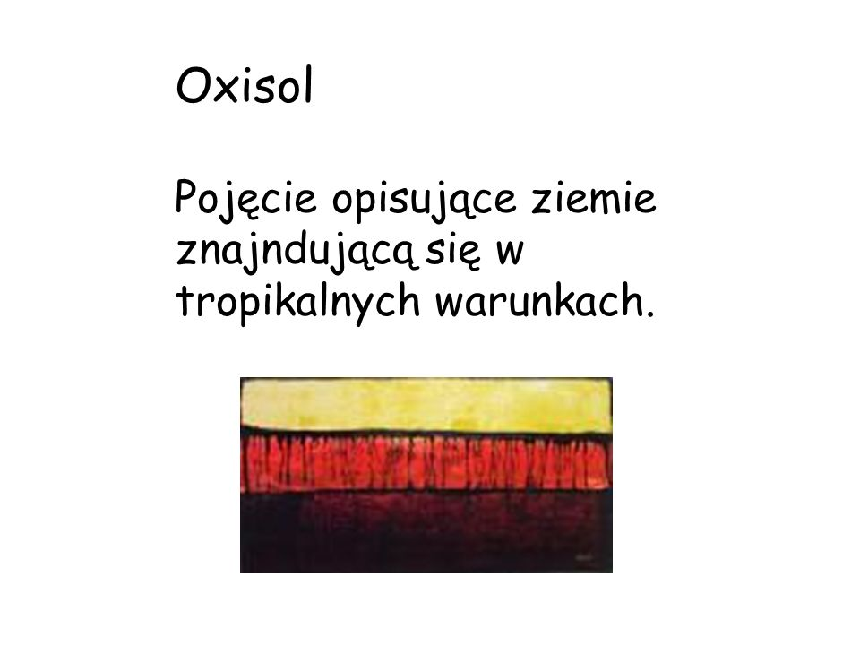 Oxisol Pojęcie opisujące ziemie