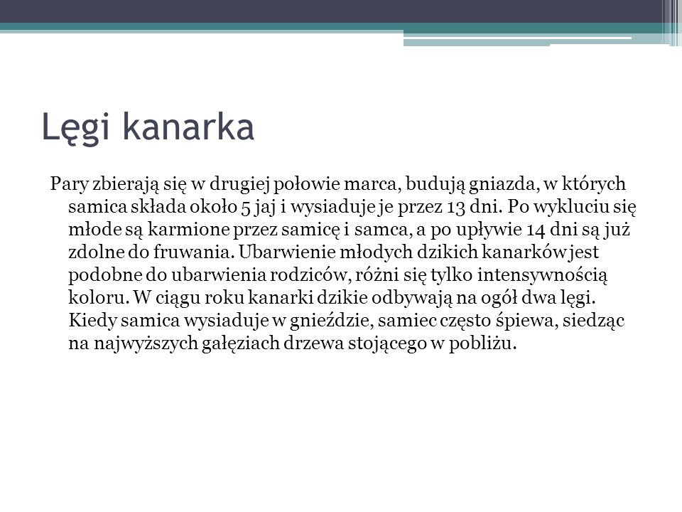 Lęgi kanarka