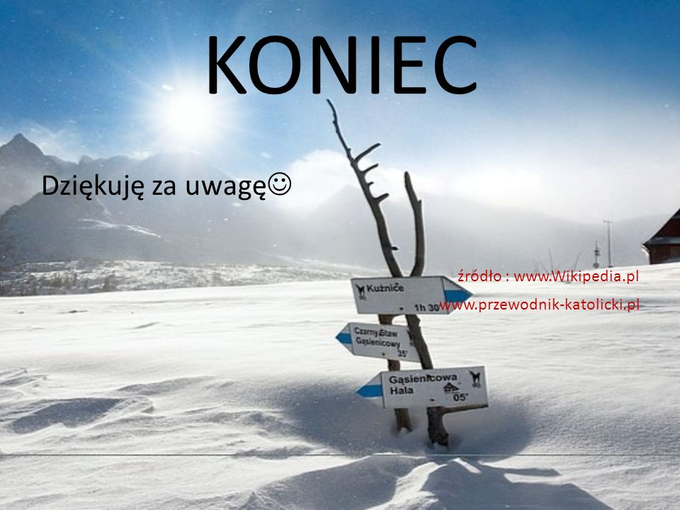 KONIEC Dziękuję za uwagę źródło : www.Wikipedia.pl