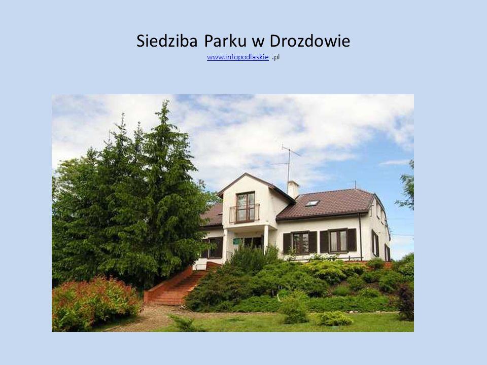 Siedziba Parku w Drozdowie www.infopodlaskie .pl