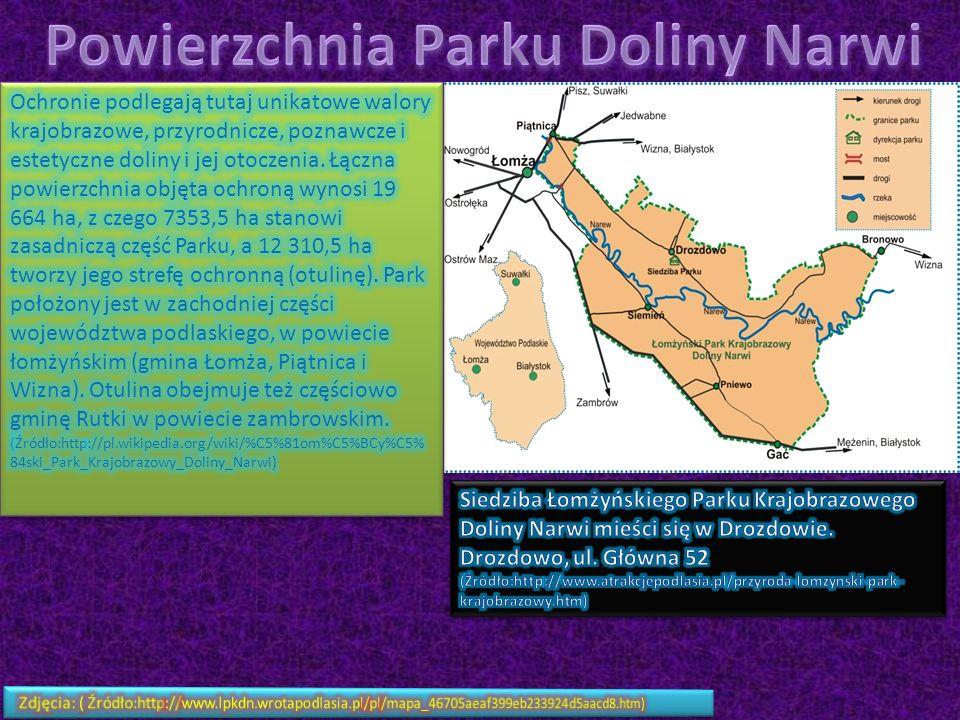Powierzchnia Parku Doliny Narwi