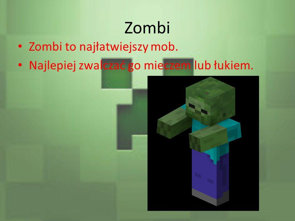 Zombi Zombi to najłatwiejszy mob.