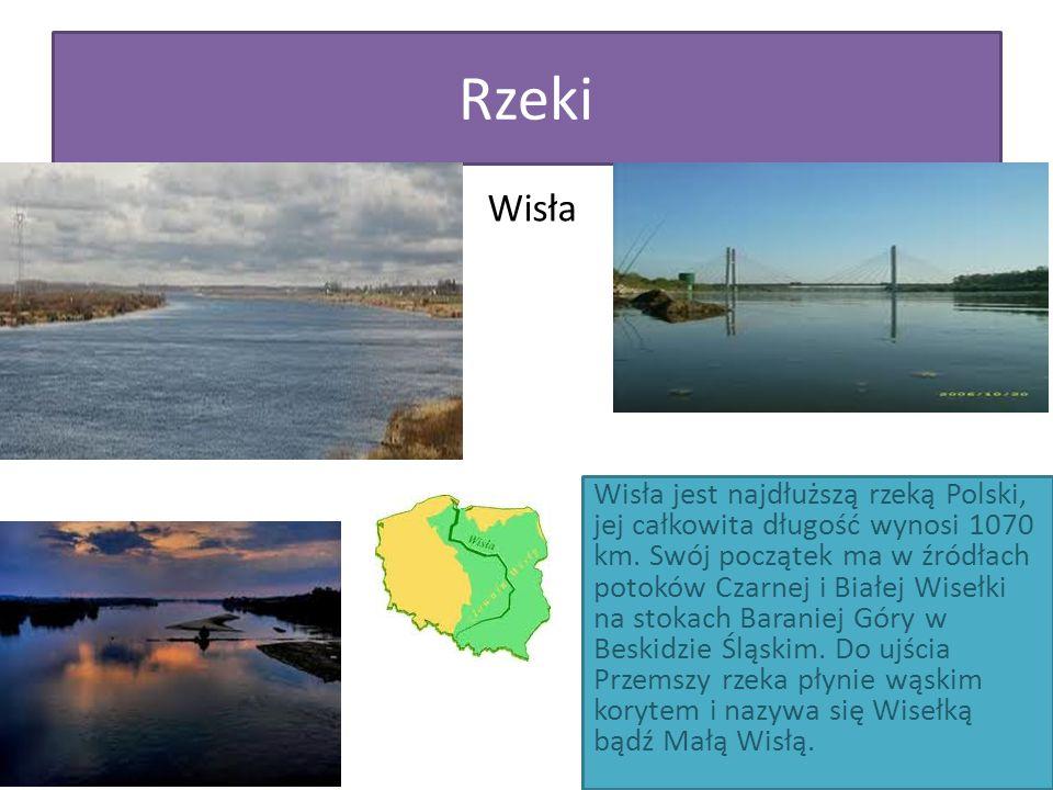 Rzeki Wisła.
