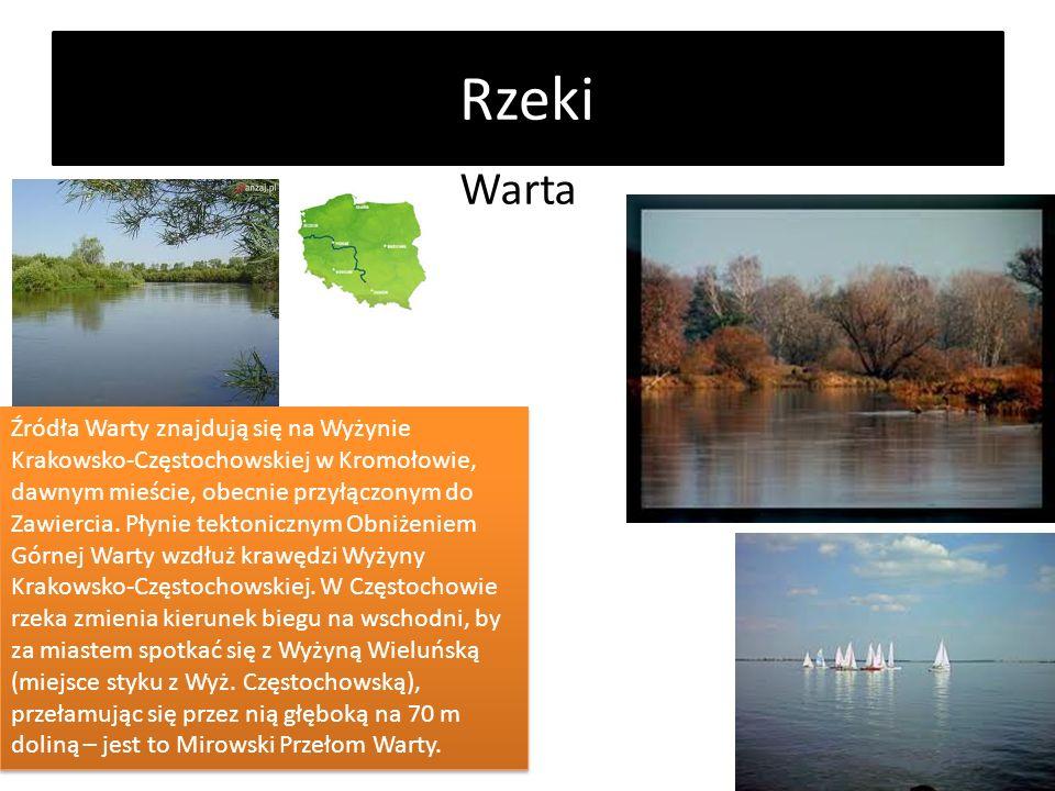 Rzeki Warta.