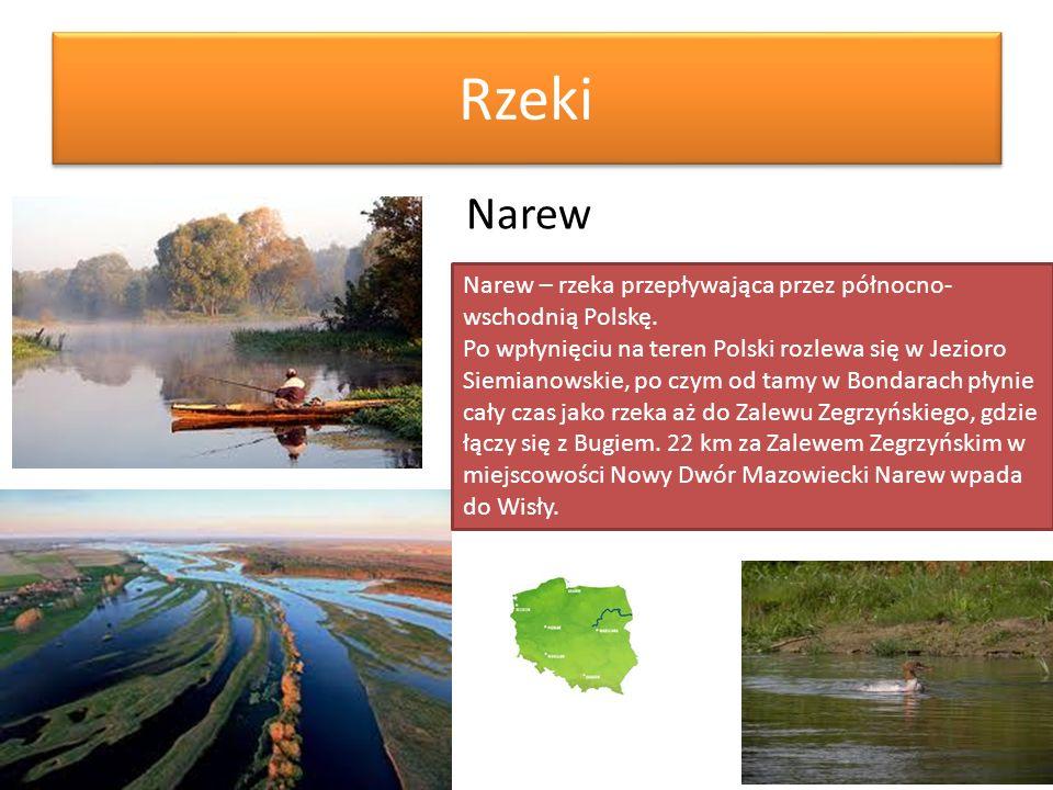 RzekiNarew. Narew – rzeka przepływająca przez północno-wschodnią Polskę.