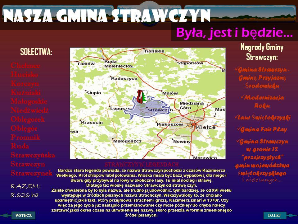 Nagrody Gminy Strawczyn: Gmina Strawczyn - Gminą Przyjazną Środowisku