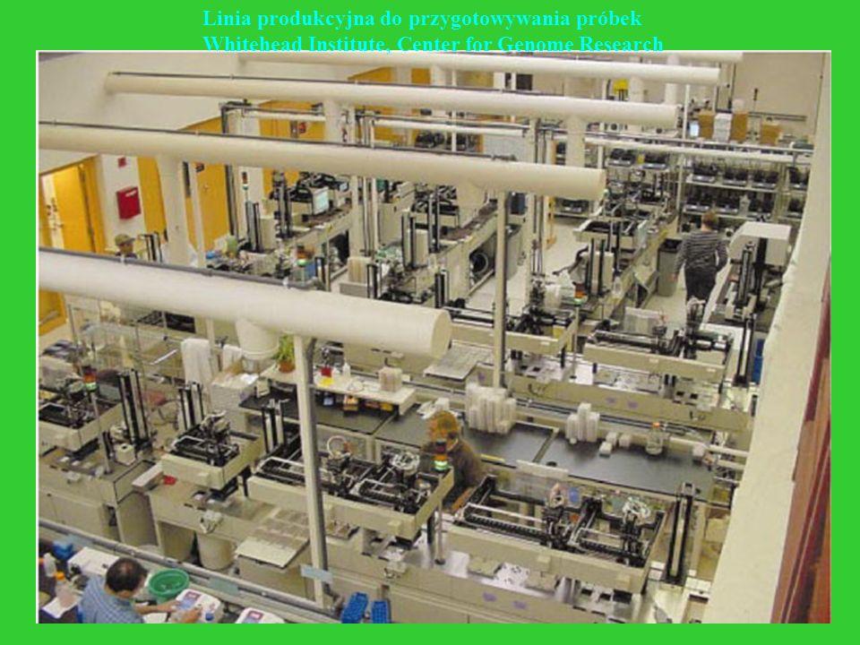 Linia produkcyjna do przygotowywania próbek