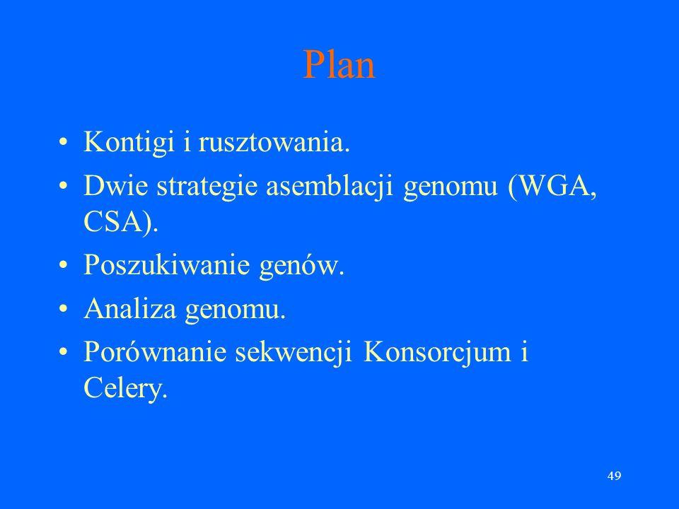 Plan Kontigi i rusztowania.