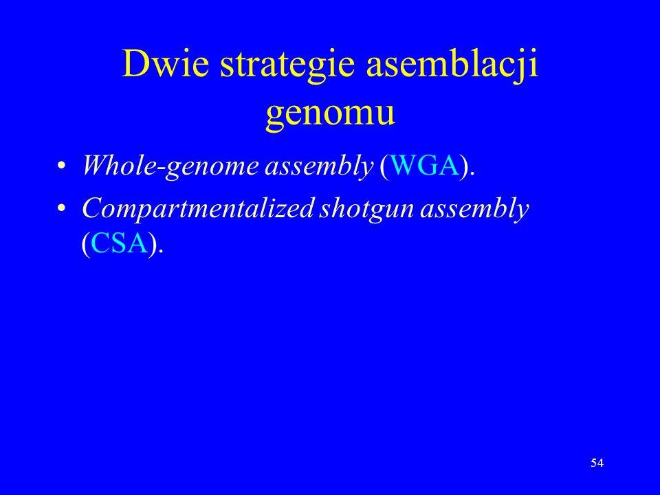 Dwie strategie asemblacji genomu