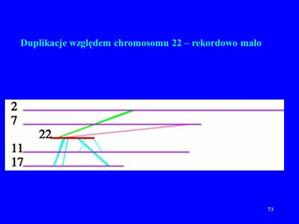 Duplikacje względem chromosomu 22 – rekordowo mało