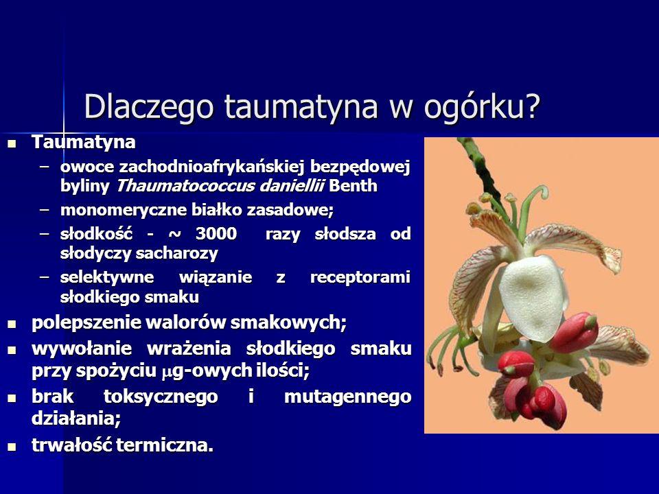 Dlaczego taumatyna w ogórku