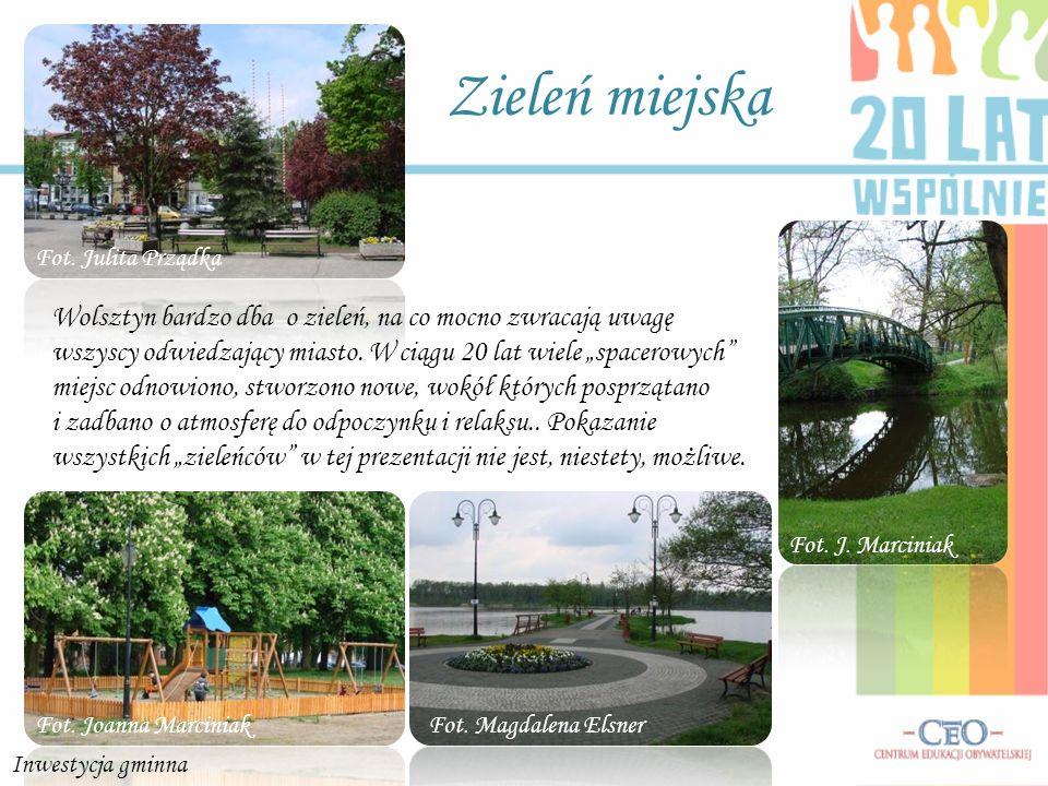 Zieleń miejska Fot. Julita Prządka.