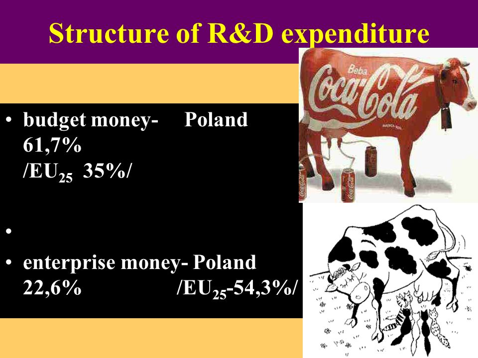 Structure of R&D expenditure