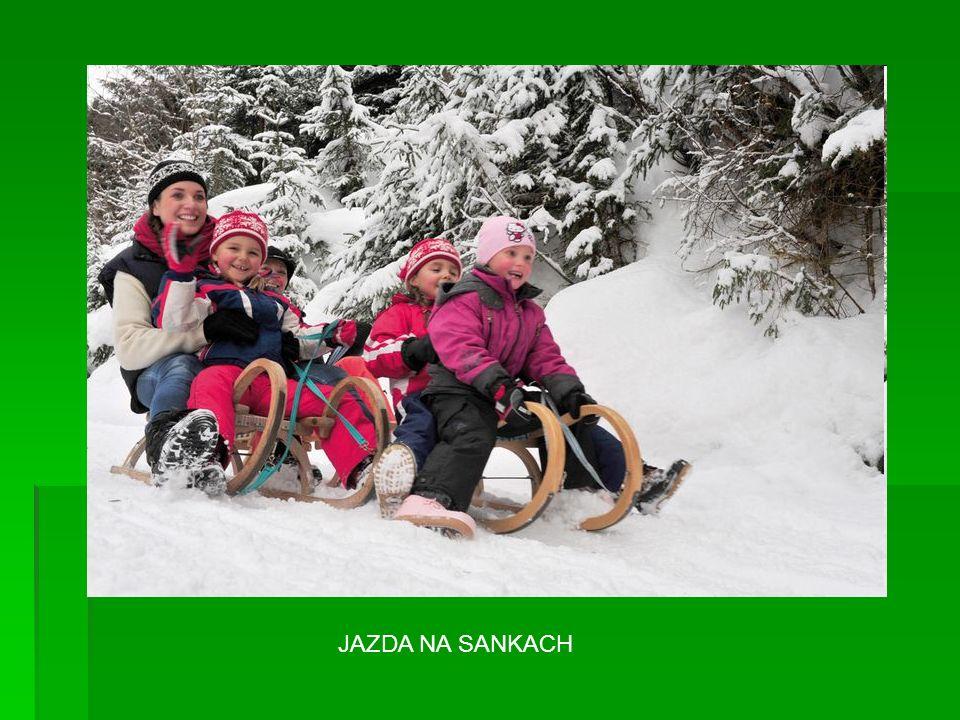 JAZDA NA SANKACH