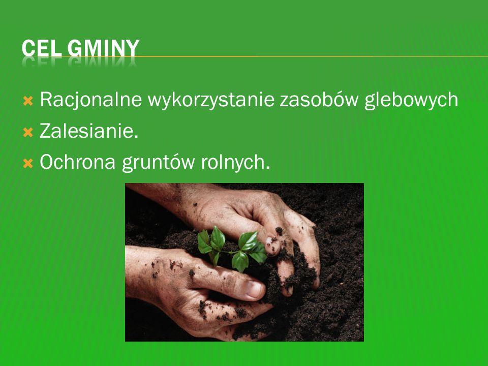Cel gminy Racjonalne wykorzystanie zasobów glebowych Zalesianie.