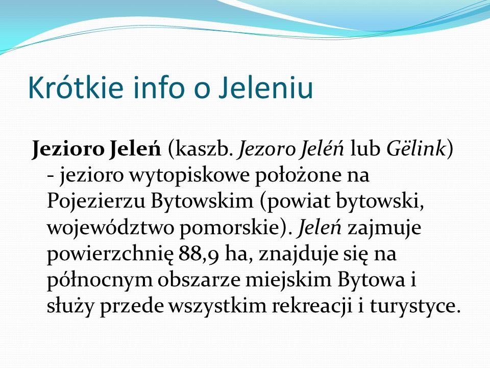 Krótkie info o Jeleniu