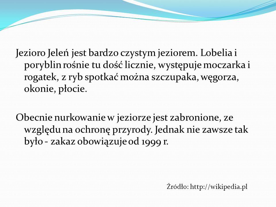 Jezioro Jeleń jest bardzo czystym jeziorem