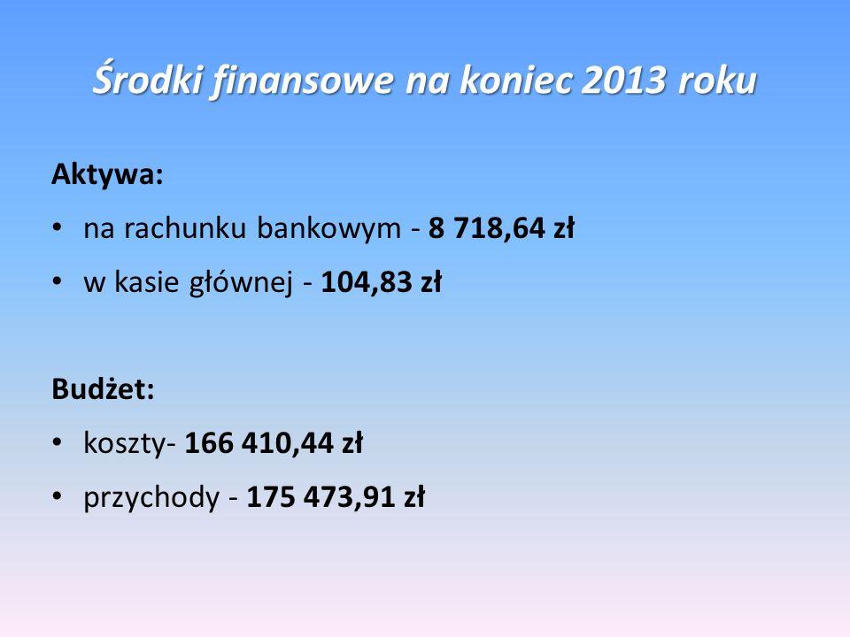 Środki finansowe na koniec 2013 roku