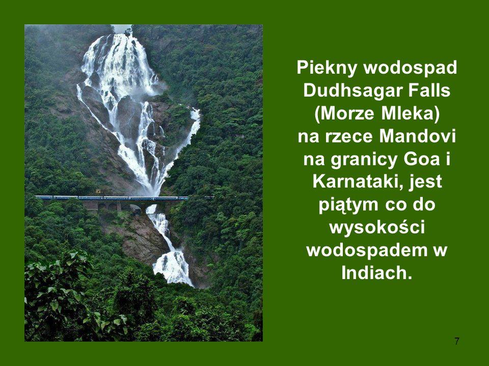 Piekny wodospad Dudhsagar Falls (Morze Mleka) na rzece Mandovi na granicy Goa i Karnataki, jest piątym co do wysokości wodospadem w Indiach.