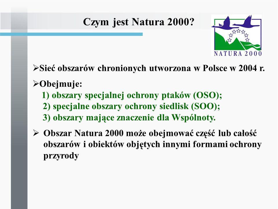 Czym jest Natura 2000 Sieć obszarów chronionych utworzona w Polsce w 2004 r. Obejmuje: 1) obszary specjalnej ochrony ptaków (OSO);