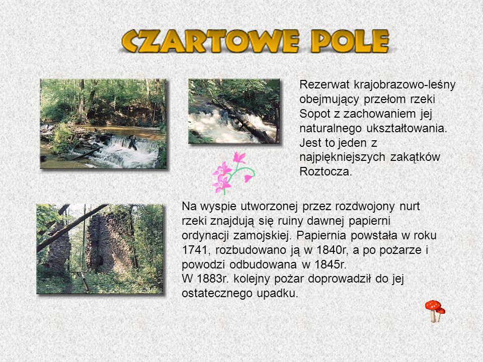 Rezerwat krajobrazowo-leśny obejmujący przełom rzeki Sopot z zachowaniem jej naturalnego ukształtowania. Jest to jeden z najpiękniejszych zakątków Roztocza.