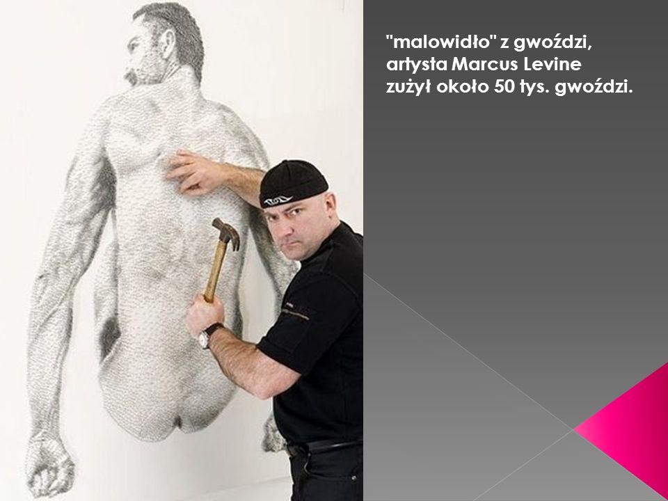 malowidło z gwoździ, artysta Marcus Levine