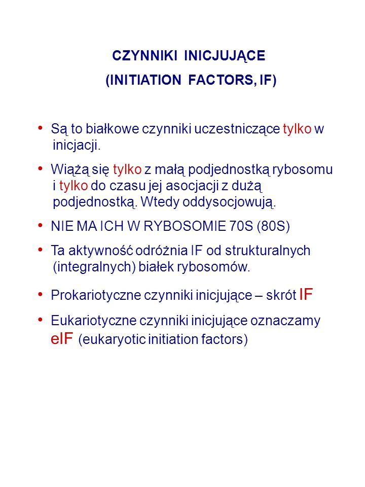 (INITIATION FACTORS, IF)