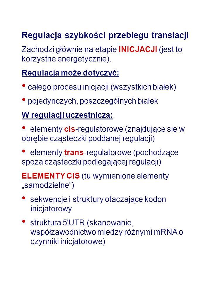 Regulacja szybkości przebiegu translacji