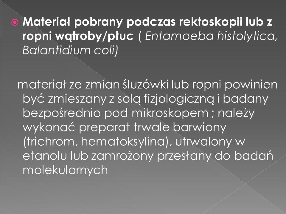 Materiał pobrany podczas rektoskopii lub z ropni wątroby/płuc ( Entamoeba histolytica, Balantidium coli)