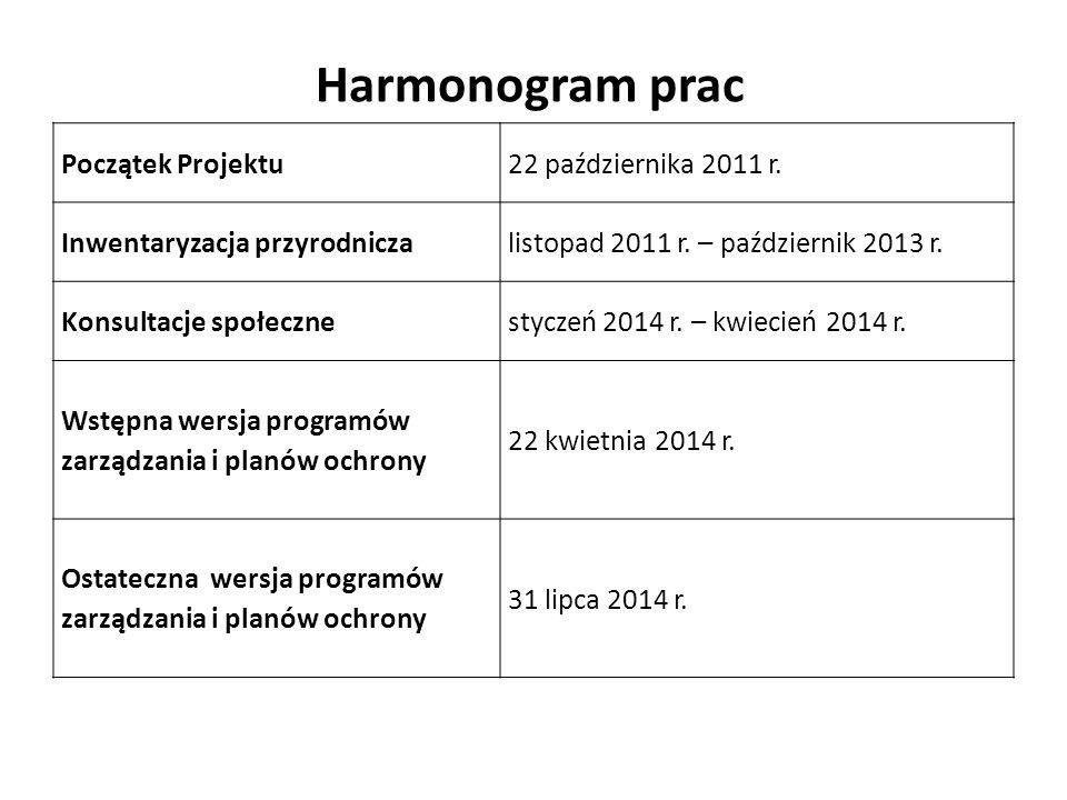 Harmonogram prac Początek Projektu 22 października 2011 r.
