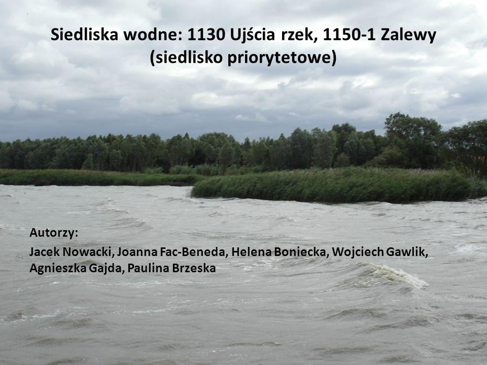 Siedliska wodne: 1130 Ujścia rzek, 1150-1 Zalewy (siedlisko priorytetowe)