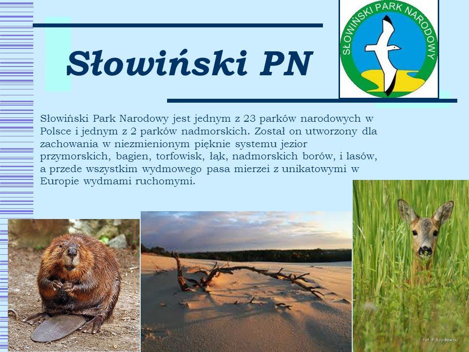 Słowiński PN