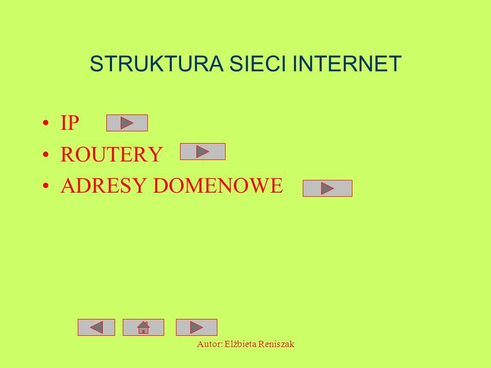 STRUKTURA SIECI INTERNET