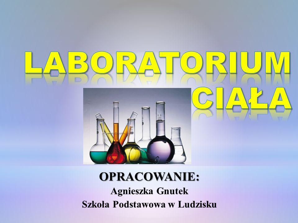 Szkoła Podstawowa w Ludzisku