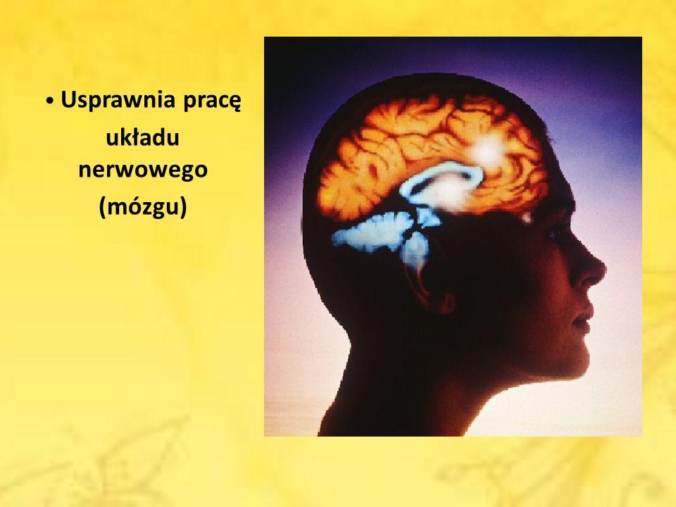 układu nerwowego (mózgu)