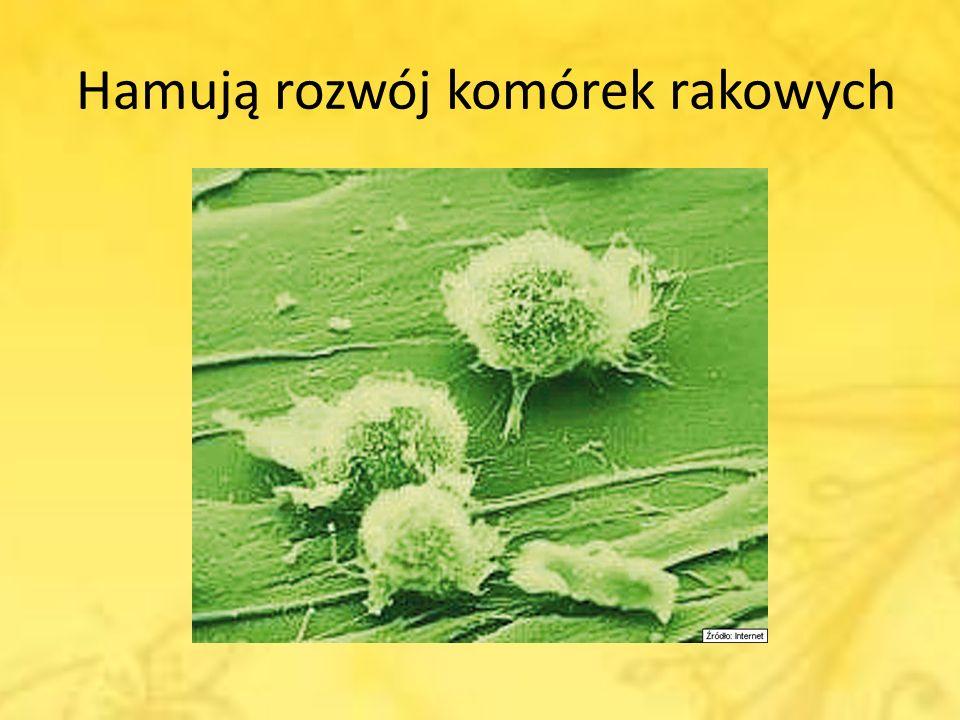 Hamują rozwój komórek rakowych