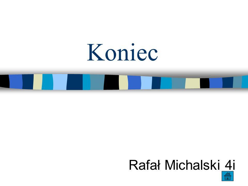 Koniec Rafał Michalski 4i