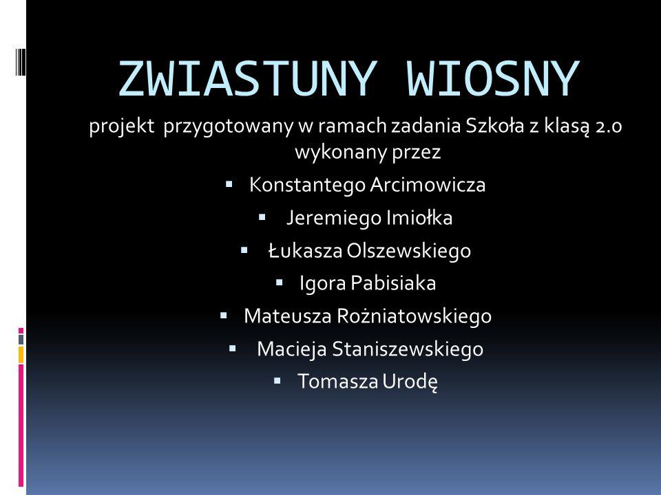 ZWIASTUNY WIOSNY projekt przygotowany w ramach zadania Szkoła z klasą 2.0 wykonany przez. Konstantego Arcimowicza.