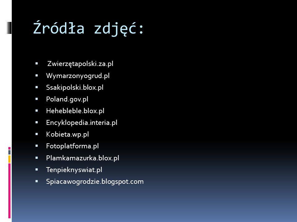 Źródła zdjęć: Zwierzętapolski.za.pl Wymarzonyogrud.pl