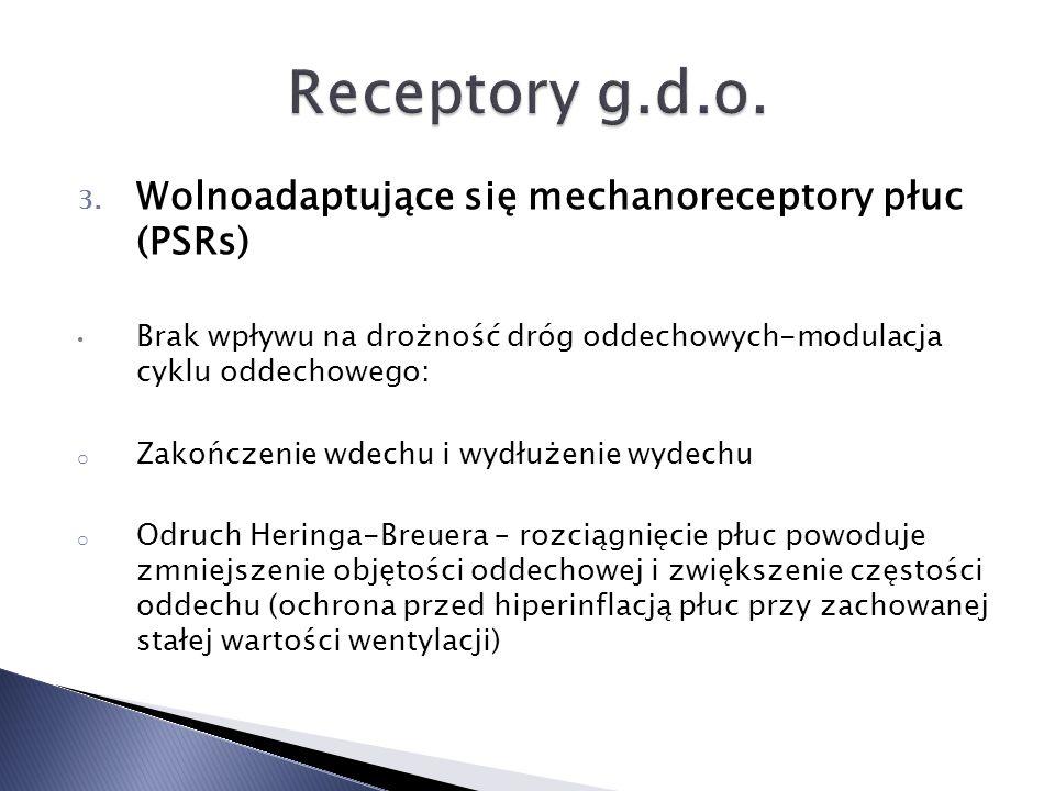 Receptory g.d.o. Wolnoadaptujące się mechanoreceptory płuc (PSRs)